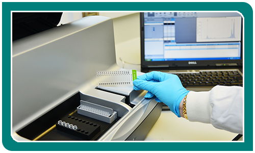 Tapestation DNA/RNA Quality