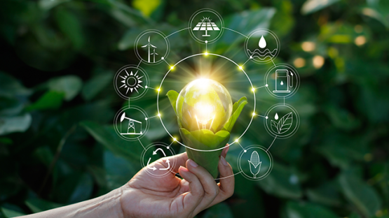 Hand holding light bulb against nature on green leaf with icons energy sources for renewable, sustainable development, save energy.